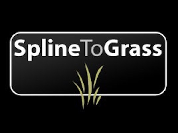 Spline To Grass plugin